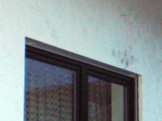 Schwarze Fassade bau de forum außenwände und fassaden 14785 schwarze flecken