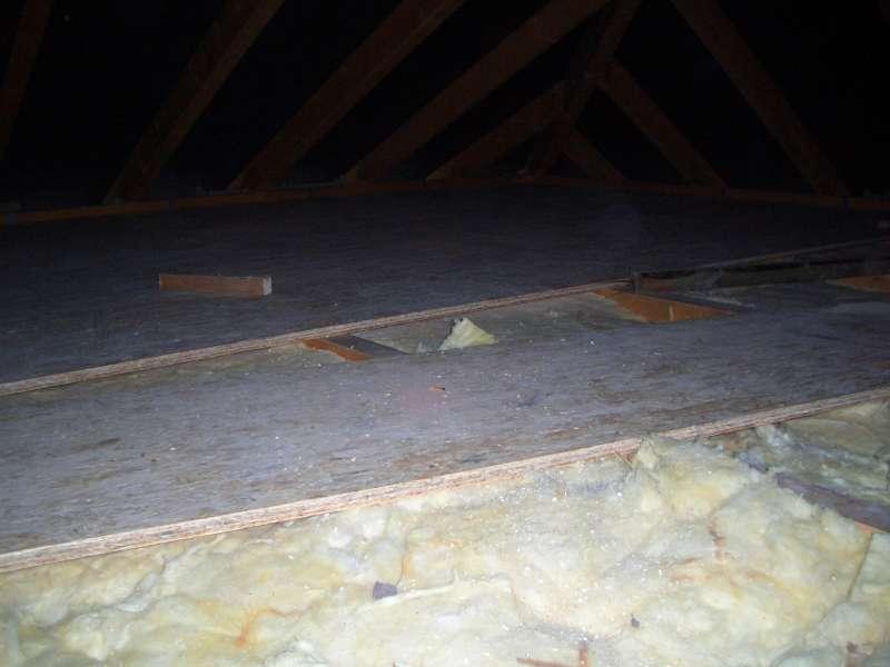 Bau De Forum Dach 15783 Schimmel Zwischen Dämmung Und Osb