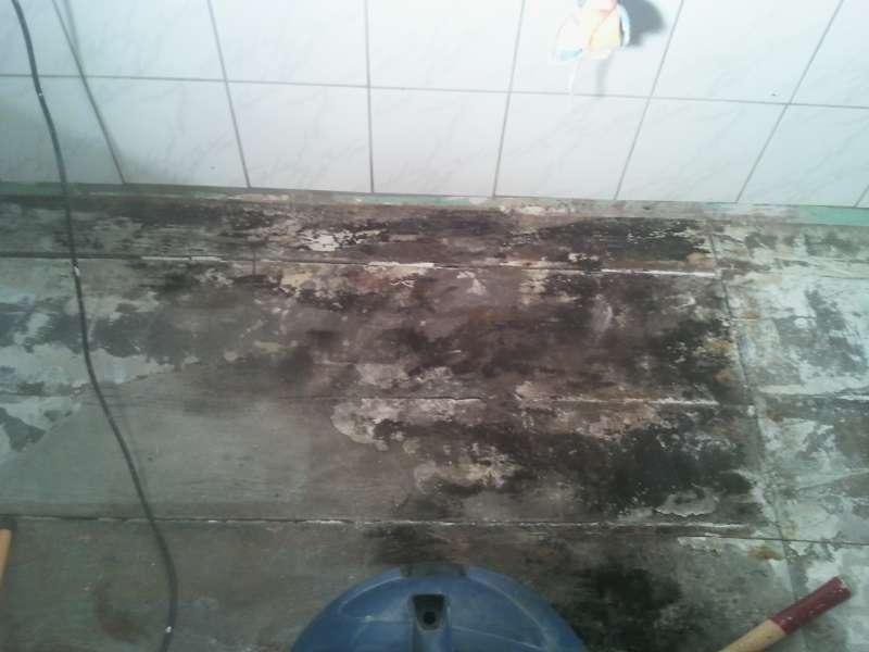BAU.DE - Bilder zum Forumsbeitrag: Wasserschaden im Bad / Holzdielen ...